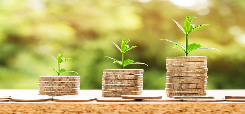Spot de beste investeringskansen met een dynamische bedrijfsdatabase